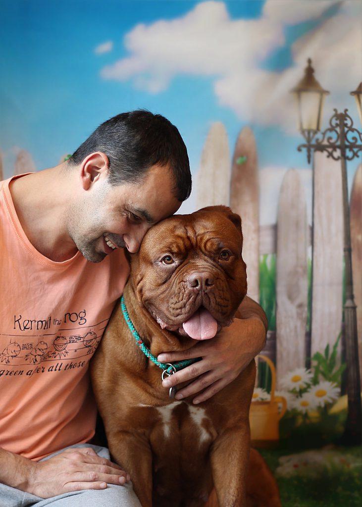Hundetransportbox - Sicherheit für deinen besten Freund