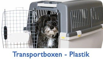 Hundetransportbox – Plastik