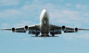 Hundetranspotbox im Flugzeug - tierische Ladung ordnungsgemäß sichern