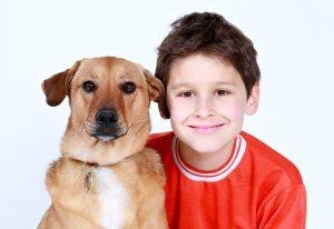 Hunderucksack für mittelgroße Hunde